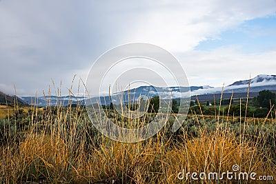 Semi-Arid Grassy and Sagebrush Highland Landscape