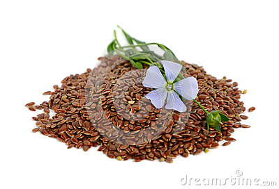 Semi di lino e fiori fotografia stock libera da diritti for Semi di fiori