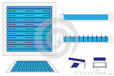 The Gallery For Olympic Size Swimming Pool Dimensions