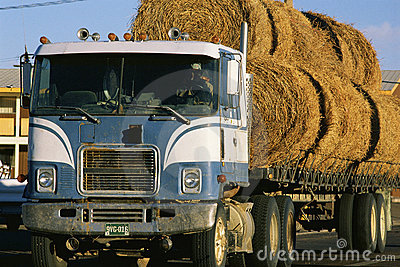 Semi truck with hay Editorial Photography