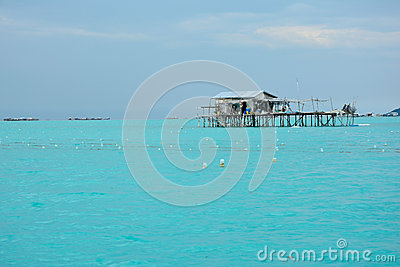 Semporna Sabah Borneo