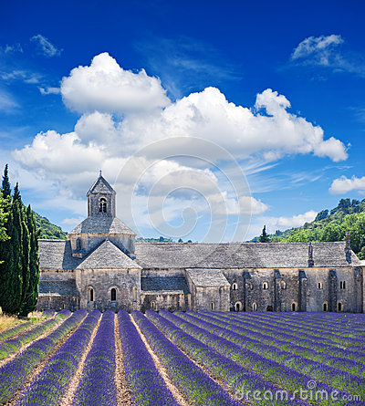 Free Senanque Abbey With Lavender Field, Landmark Of Provence, Vauclu Royalty Free Stock Photography - 32352927