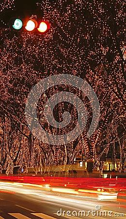 Sendai December illumination f