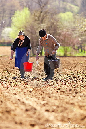 Senior couple planting on their land