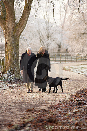 Senior Couple On Winter Walk With Dog