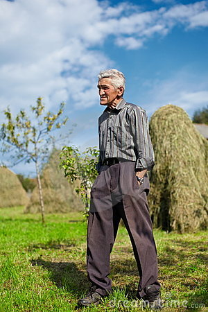 Senior farmer on a meadow with hay stacks