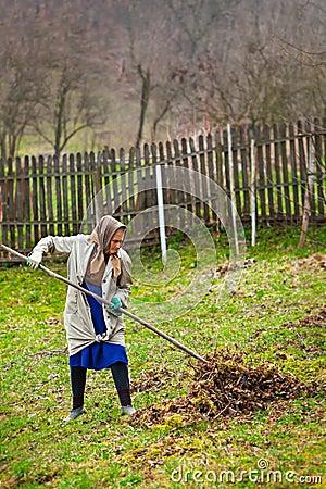 Senior farmer spring cleaning the garden