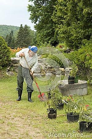 Senior gardening 2