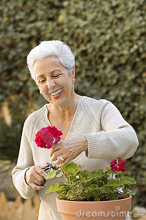 Senior lady pruning her plants