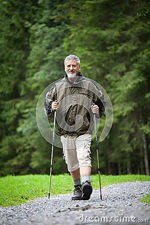 senior man nordic walking outdoors