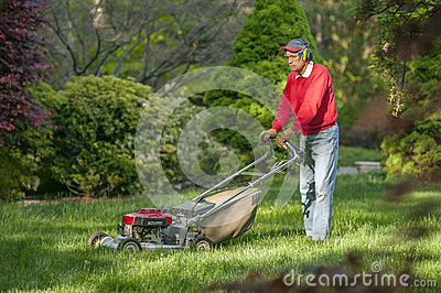 Senior man owing grass