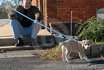 Senior man and puppy