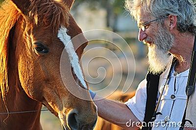 Senior man stroking big horse portrait close up