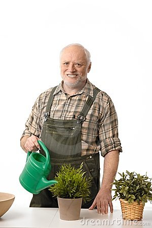 Senior man watering plants