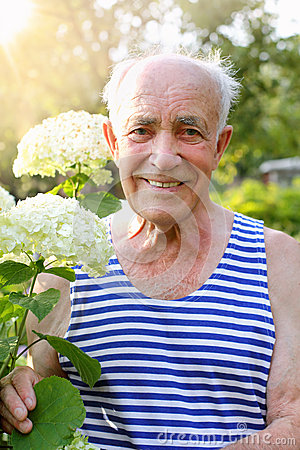 Free Senior Man With Blooming Hydrangea Royalty Free Stock Photo - 54060475