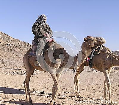 Senior tourist on camel 4