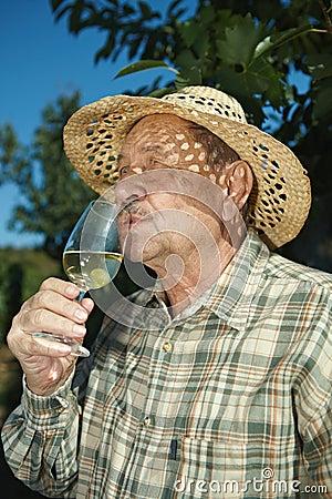 Senior vintner tasting wine