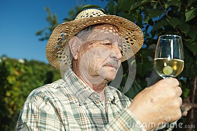 Senior winemaker with glass of wine