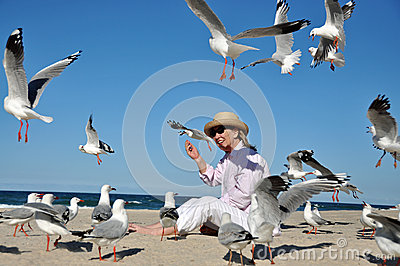 Senior woman feeding flock seagulls at beach