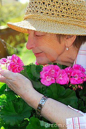 Free Senior Woman Gardening Royalty Free Stock Photo - 2419665