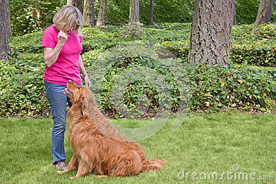 Senior woman training dog to sit