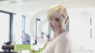 Senior woman working with her multi ethnic team in office stock footage