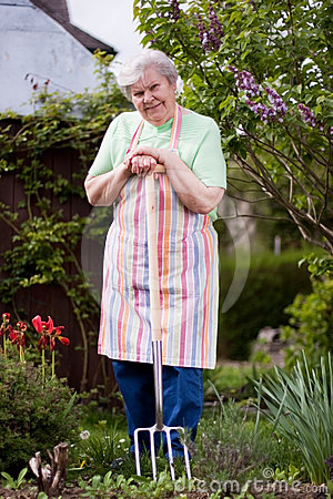 Free Senior Works In The Garden Stock Photography - 24589622