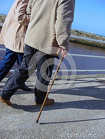 Free Seniors Walking Royalty Free Stock Photos - 7091318
