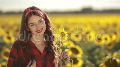Sensual smiling woman posing in sunflower field stock video footage