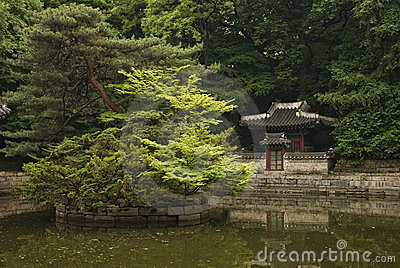 Seoul south korea temple in forest gardens
