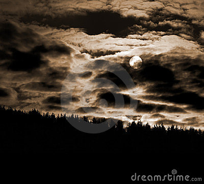 Sepia cloudscape over forest