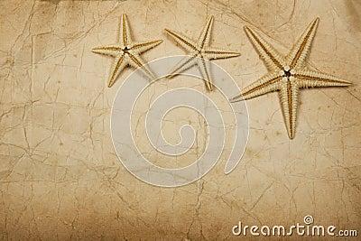 Sepia Starfish Paper