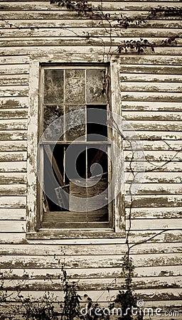 Sepia Toned Window