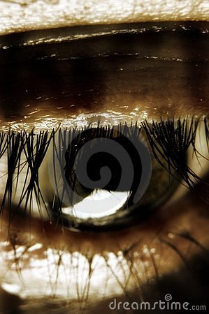 Sepia vision