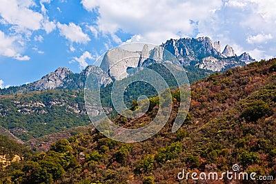 Sequoia National Park Landscape