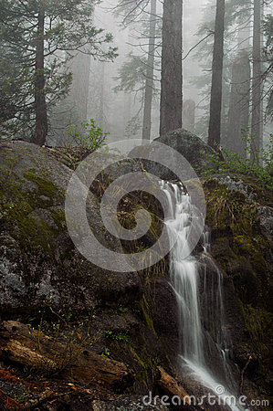 Free Sequoia Waterfall Stock Photography - 49099452