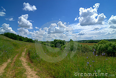 Serene rural landscape