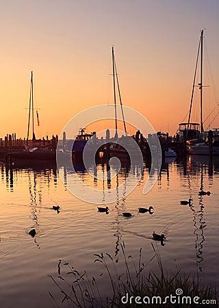 Free Serene Sunset Stock Photography - 1086082