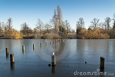 Serpentine Lake, Hyde Park, London