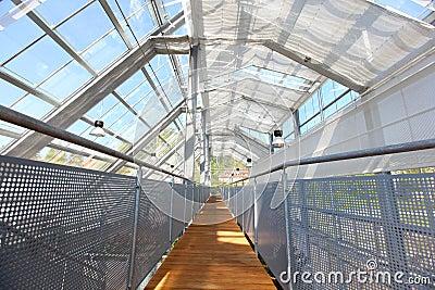 serre avec la toiture en verre image stock image 19525451. Black Bedroom Furniture Sets. Home Design Ideas
