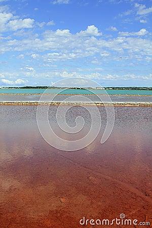 Ses Salines Formentera colorful saltworks horizon