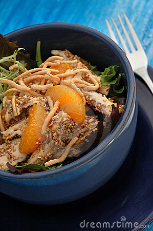 Free Sesame Chicken Salad Stock Photo - 561450