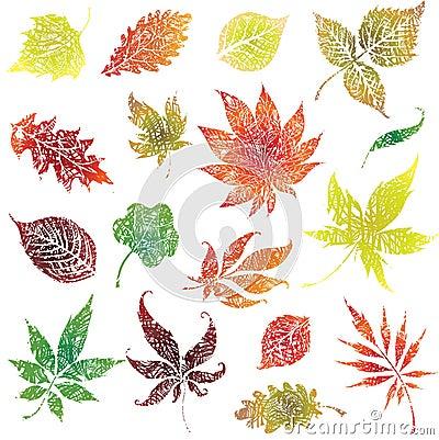 Set 2 of autumn grunge leafs. Thanksgiving