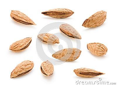 Set almond nut