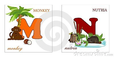 Set of Alphabet letters, M-N