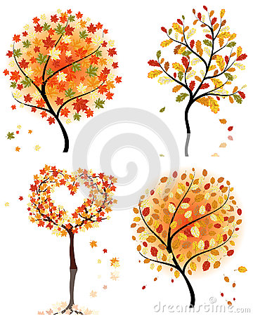 Set  autumn tree