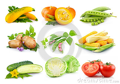 Set of autumnal vegetables isolated on white