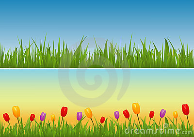 Set of Banners: Grass Vector