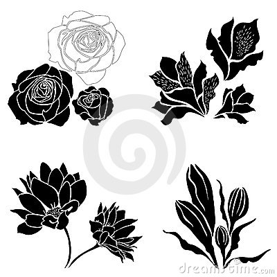 Set of black flower design elements