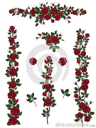 Free Set Brushes Flowers Climbing Roses Stock Images - 66857274